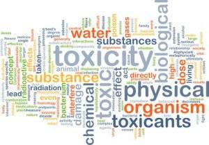 Heavy metal toxicity - what we can do to prevent it